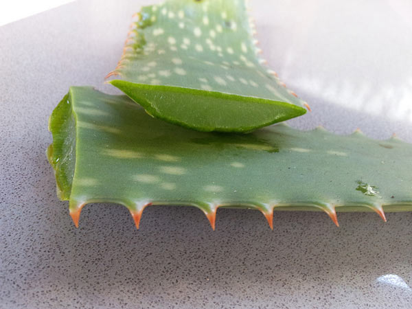 Aloe-vera-gel-for-sunburn-
