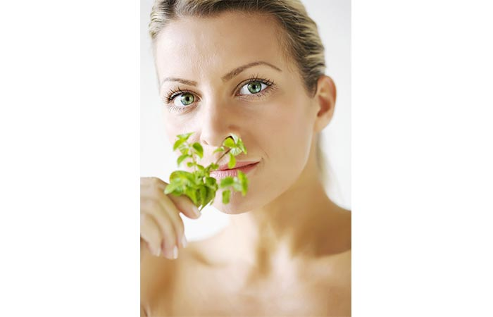 Benefits Of Mint Leaves For Acne