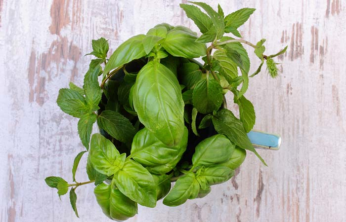 Mint And Basil Face Pack For Acne