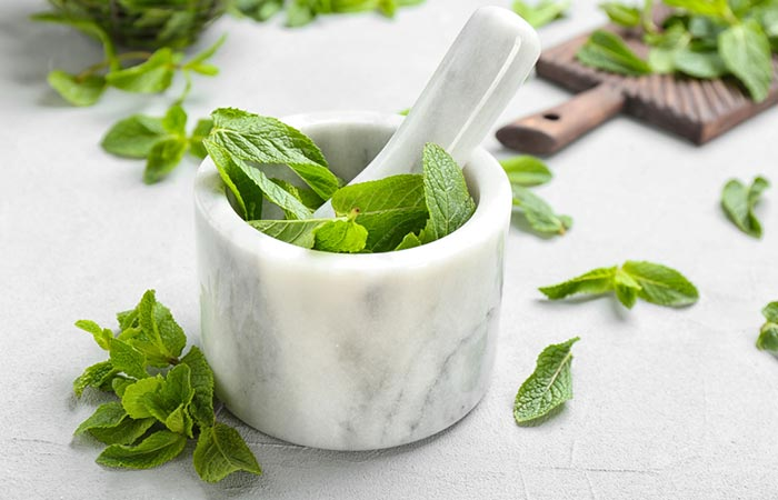 Mint Leaves Paste For Acne