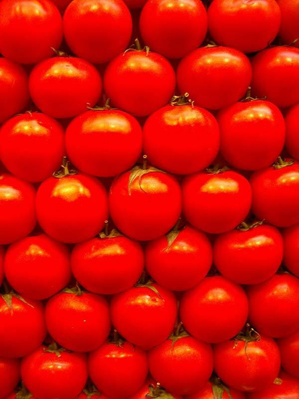 tomatoes for oily skin care