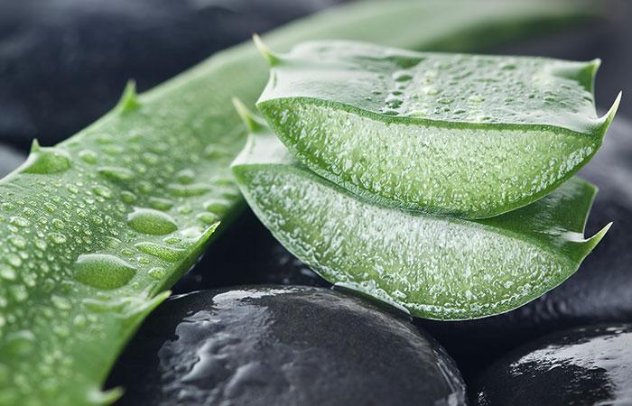 3.-Aloe-Vera-And-Avocado