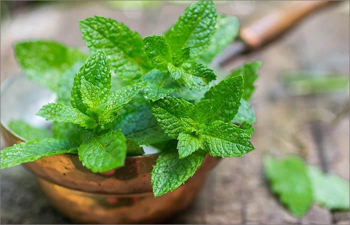 Mint-Leaves-For-Skin-Lightening