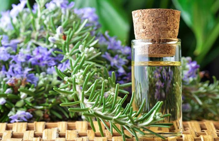 Rosemary-Oil1