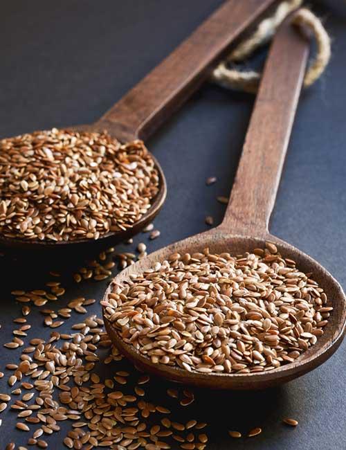 19. Flax Seeds