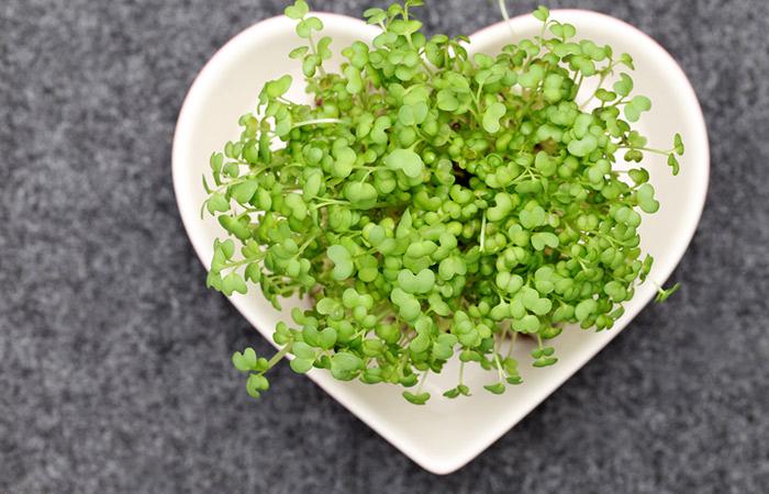 Heart Healthy Foods - Watercress