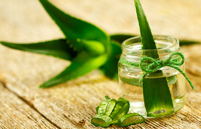 Herbs For Weight Loss - Aloe Vera For Weight Loss