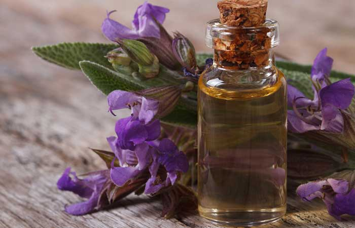How-Does-Rosemary-Help-In-Hair-Growth3