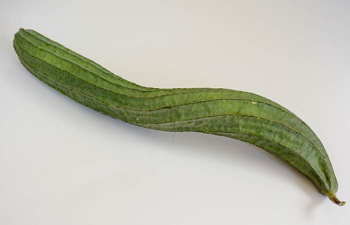 Ribbed-Gourd1