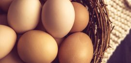 Egg Protein Chart - How Many Proteins Does Egg Contain?