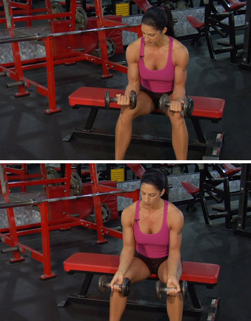 2. Wrist Curl Exercise With Dumbbells