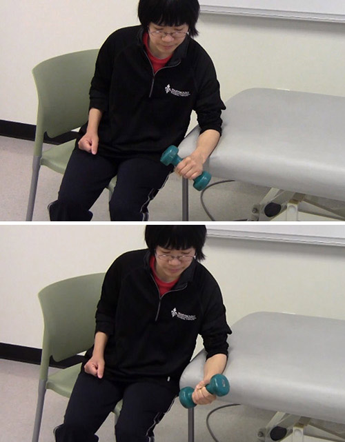 7. Dumbbell Seated Supination And Pronation
