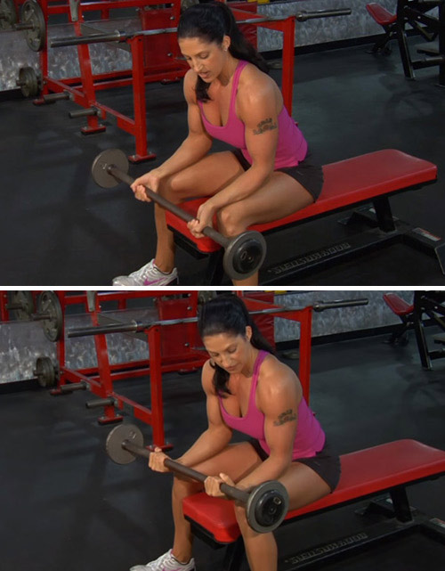 9. Barbell Reverse Wrist Curl Exercise