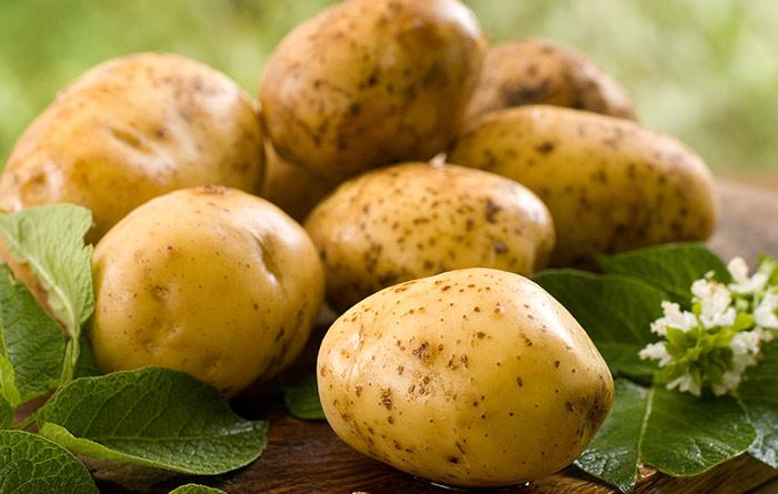 12. Potato