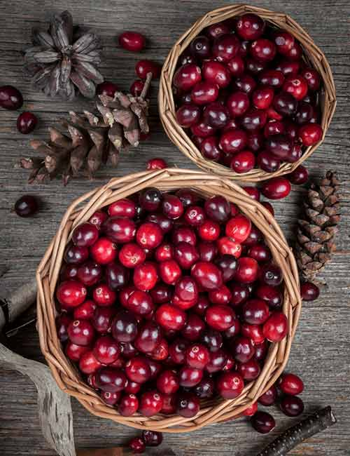 Foods For A Healthy Kidney - Cranberries