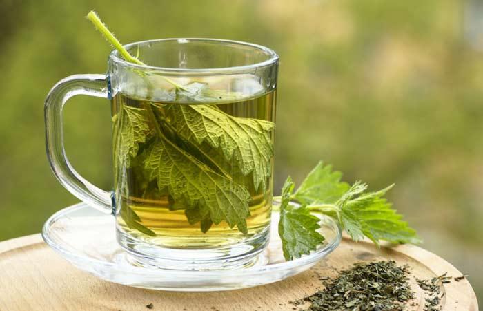 17.-Nettle-Leaf-For-Kidney-Stones