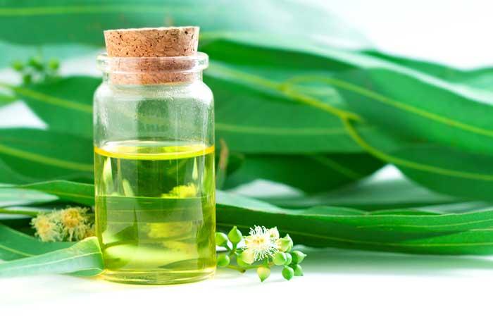 Foot Pain - Eucalyptus Oil
