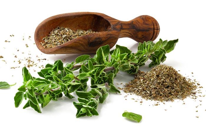 Herbs for Diabetes - Oregano
