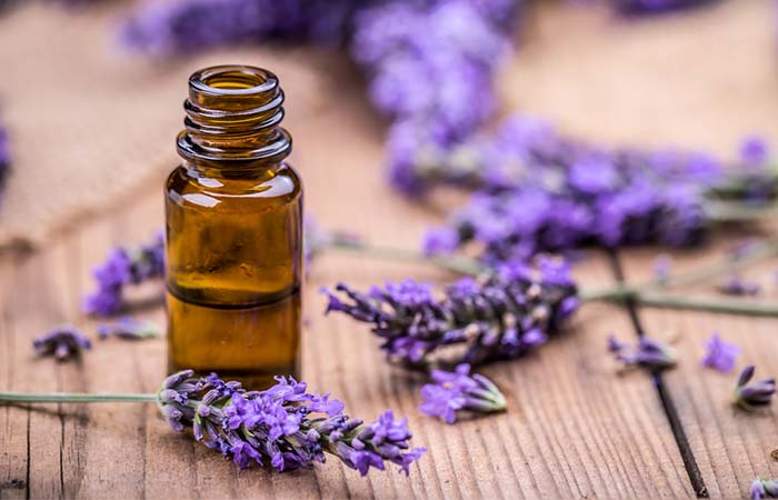 c. Lavender Oil