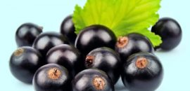 15 Amazing Health Benefits Of Maqui Berry