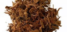 6-Wonderful-Benefits-Of-Clavo-Huasca-For-Skin,-Hair-And-Health