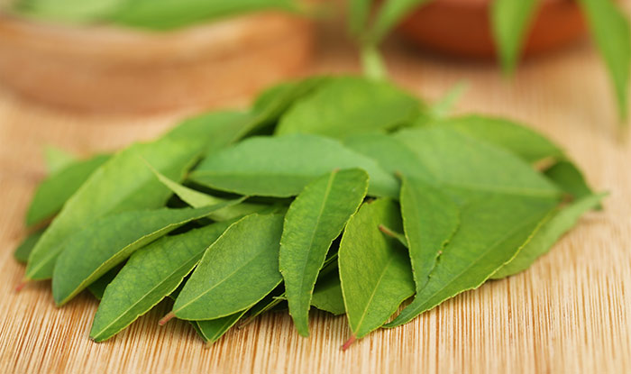 14. Hibiscus And Curry Leaves For Hair Growth