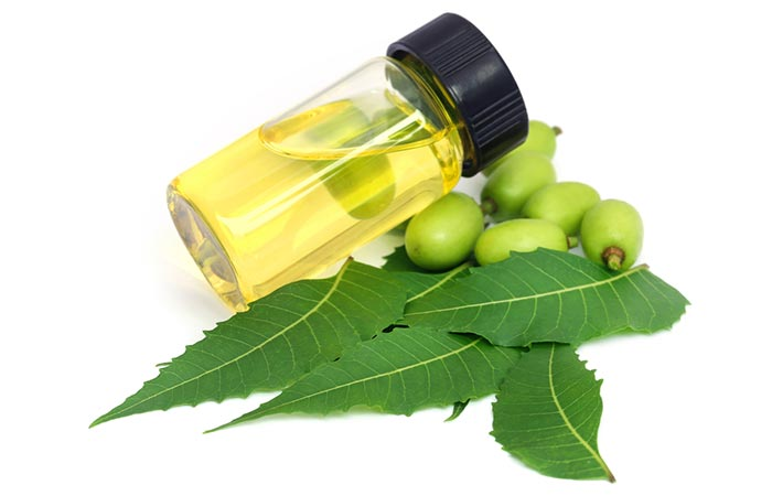 Directly Applying Neem Seed Oil