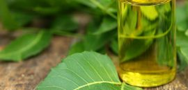 Neem Oil Tips To Use It For Scabies Treatment