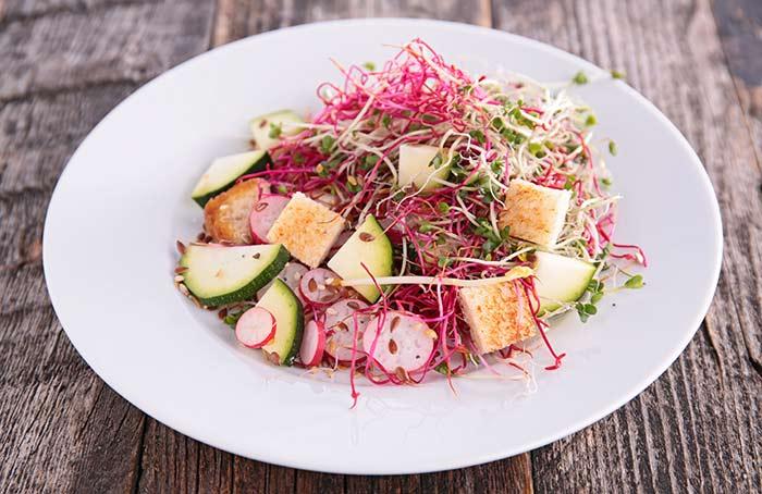 Alkaline Breakfast Recipes - Mix Sprout Salad