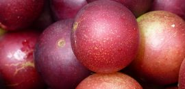 10 Side Effects Of Camu Camu You Should Be Aware Of