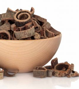 9 Incredible Benefits Of Magnolia Bark You Must Know Today (Dosage Included)